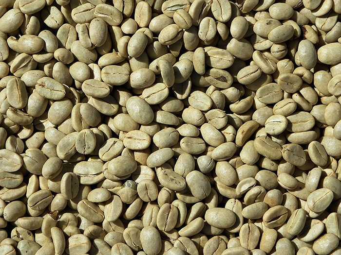Grains de café vert